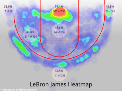 LeBron James 2013 shotchart